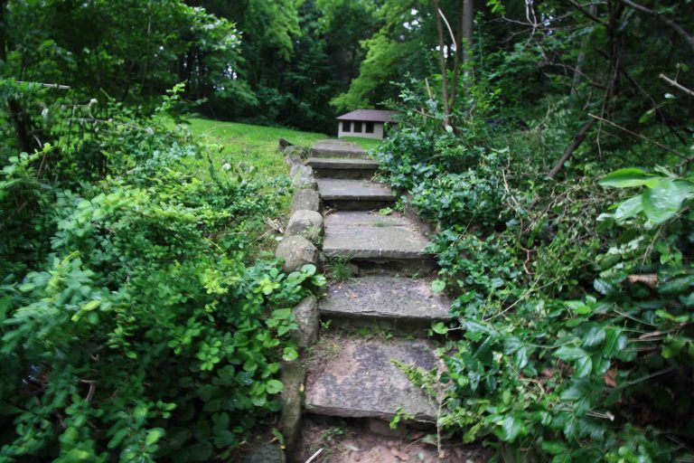Landscape Renovation Brighton NY