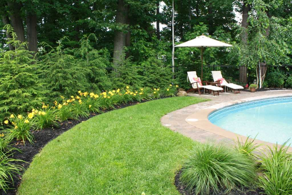 Backyard with a inground Pool Landscape